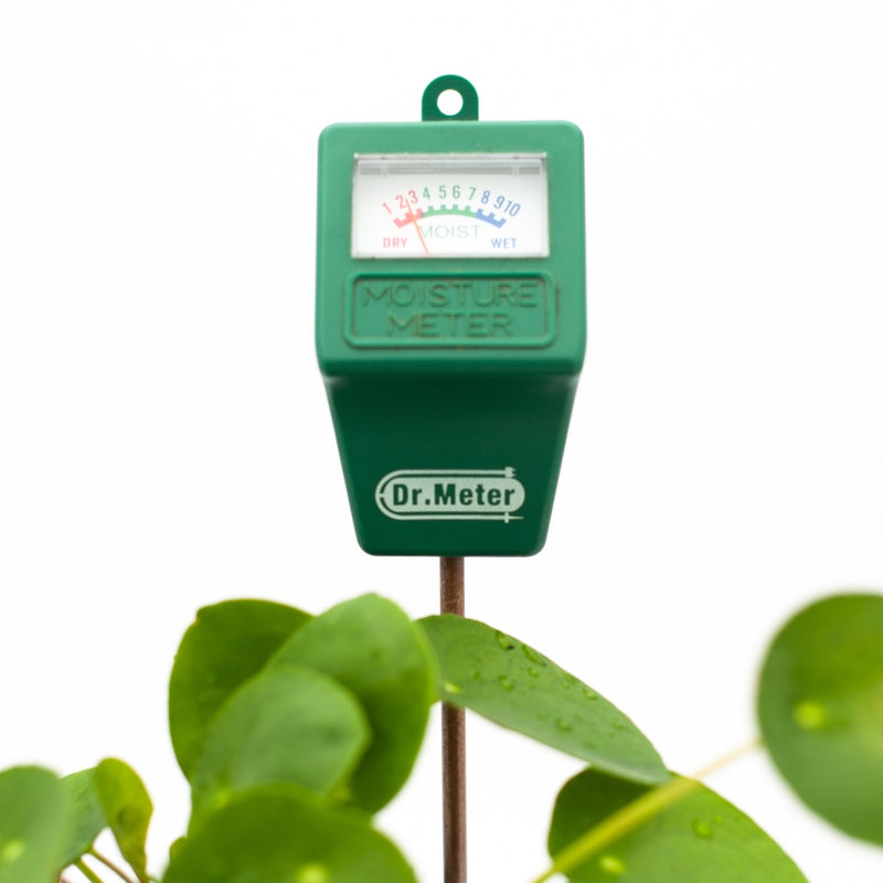 soil moisture meter-plant care-Mosey