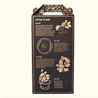 indoor plant potting kit