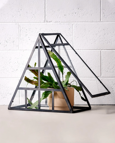 constellation terrarium-other-Mosey