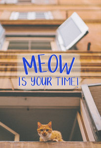 Meow Is Your Time Card
