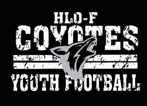 HLO-F Youth Football Port & Company ® Fan Favorite ™ Blend Tee