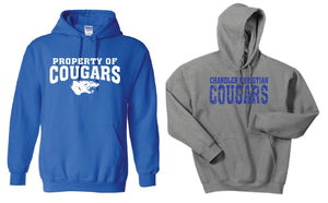 CCS GILDAN HOODED SWEATSHIRT- FULL FRONT DESIGN