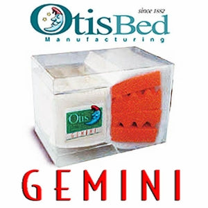 Gemini Futon Mattress