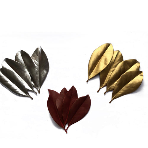 Painted Magnolia Leaves and Painted Galax Leaves