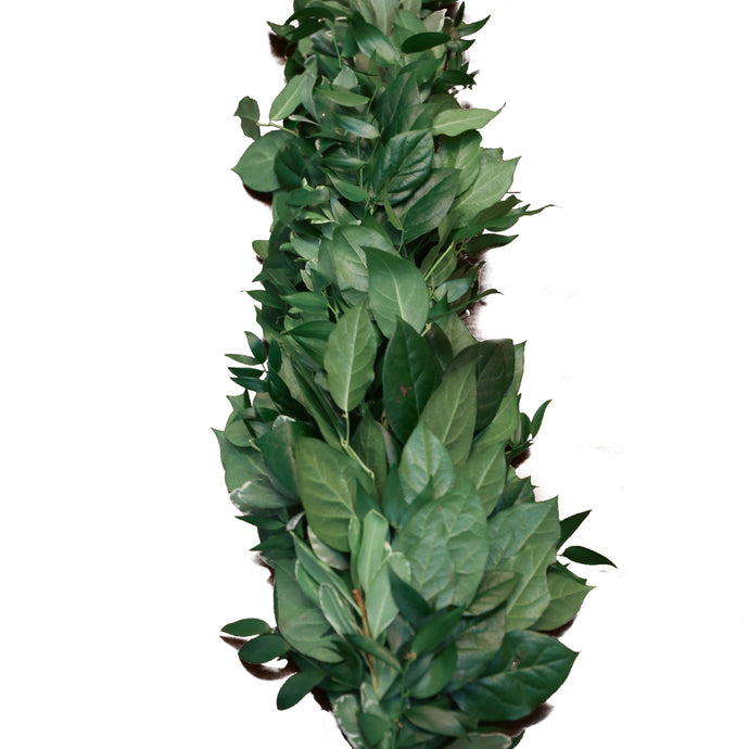 Italian Ruscus, Salal, & Varigated Pittosporum Tips Garland