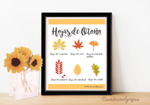 Free Spanish Language Fall Leaves Printable!