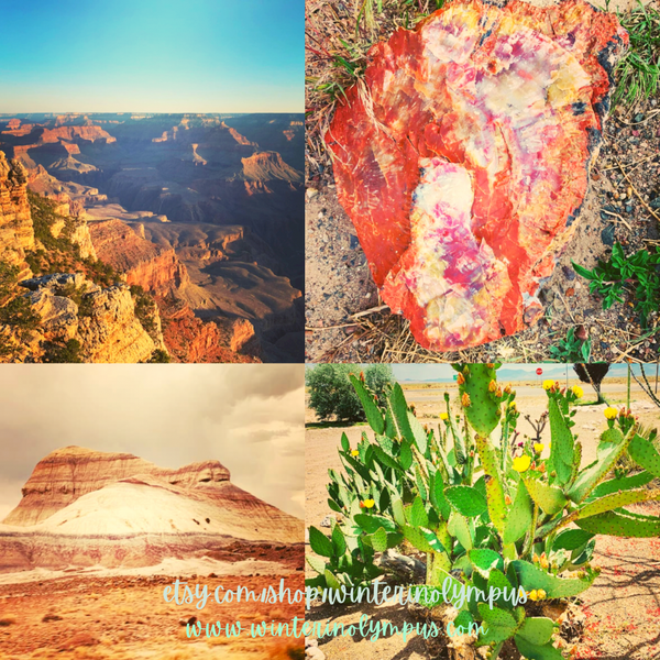 Grand Canyon Petrified Forest Images