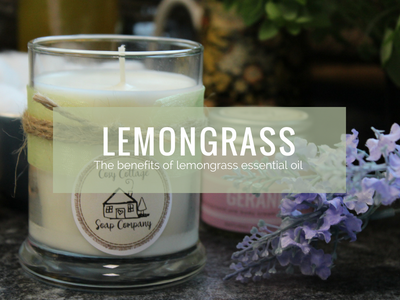 Brilliant Benefits of Lemongrass Essential Oil