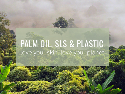 Plastic, Palm Oil & SLS: What you Need to Know