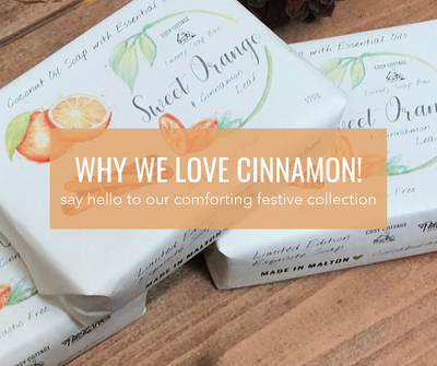 Why We Love Cinnamon!