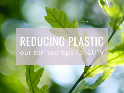 10 Easy Tips to Reduce Your Plastic Waste in 2019