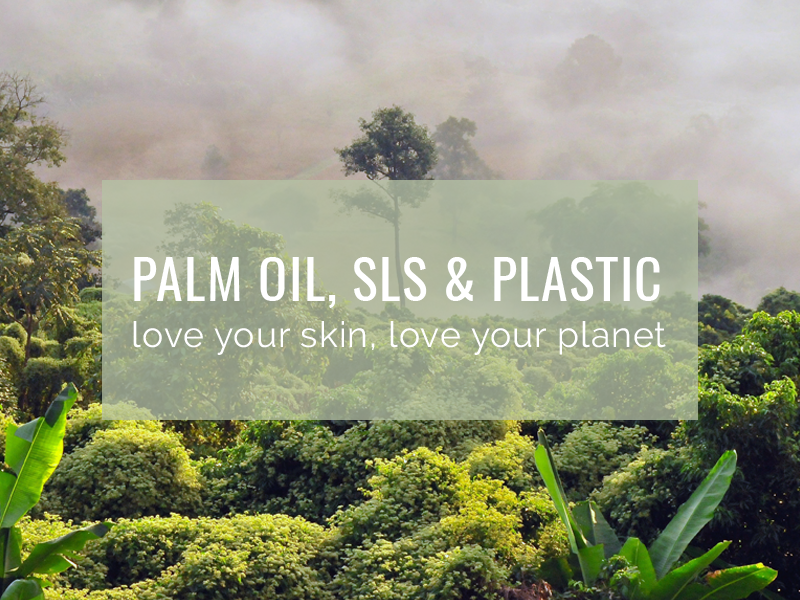 Palm Oil SLS and Plastic Need to Know