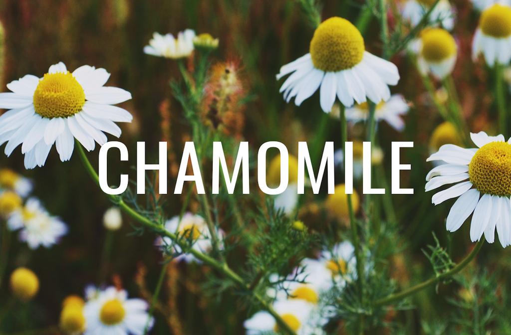 Chamomile beauty products