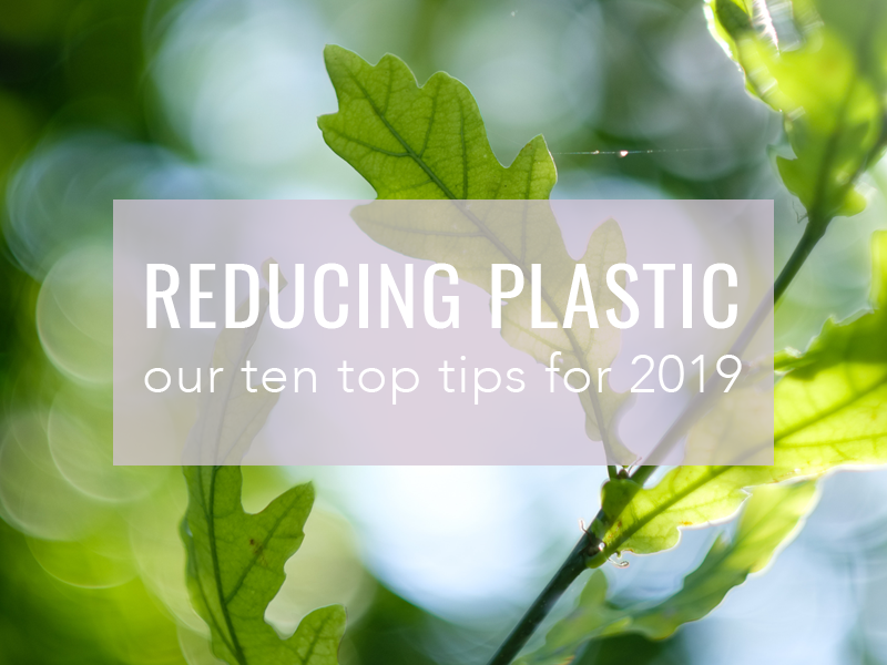 Reducing Plastic in 2019