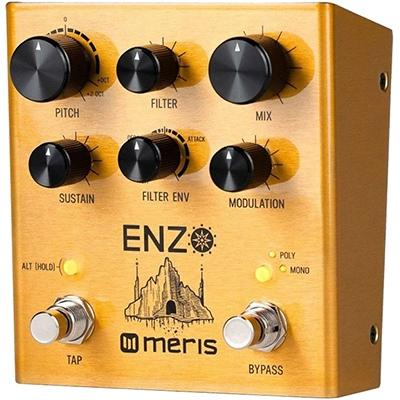 MERIS Enzo Pedals and FX Meris