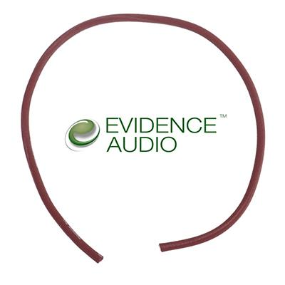 EVIDENCE AUDIO Monorail Cable 1ft Accessories Evidence Audio