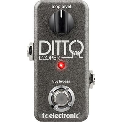 TC ELECTRONIC Ditto Looper Pedals and FX TC Electronic