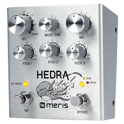 MERIS HEDRA Pedals and FX Meris