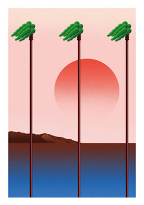 Pink palm trees--Limited edition of 25