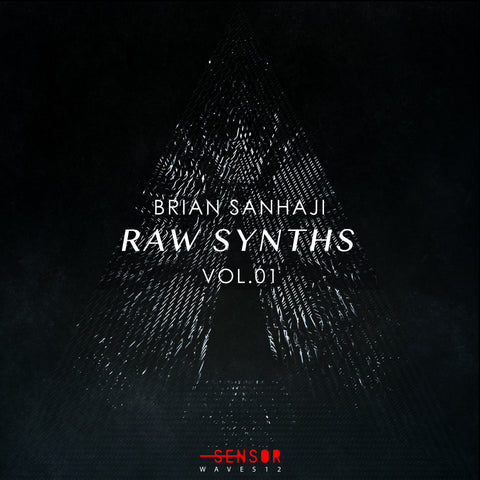 RAW SYNTHS VOL.1