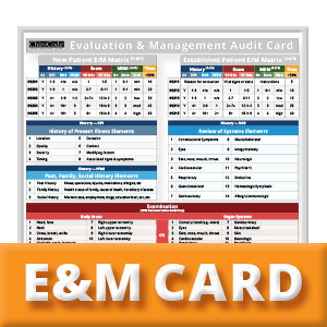 Chiropractic Evaluation and Management Audit Card