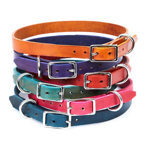 Medium Leather Dog Collar - Available in More Colors