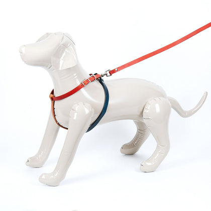 Medium Multi Colored Leather Dog Harness - Available in More Colors - Odell Design Studio