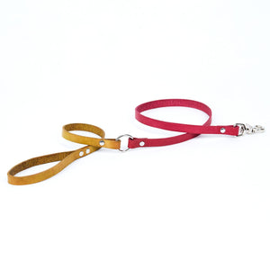 Small Leather Dog Leash - Available in More Colors
