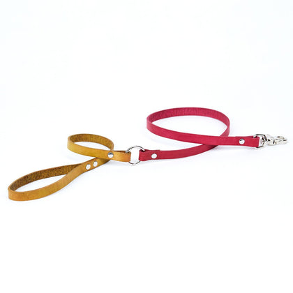 Small Leather Dog Leash - Available in More Colors - Odell Design Studio