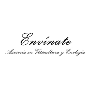 Envínate Winemakers Tenerife