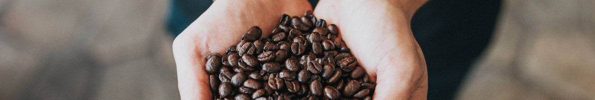 Relationships Within The Coffee Industry