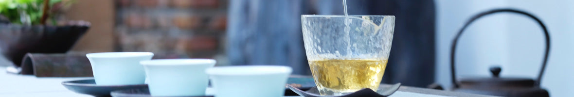 Understanding White Tea