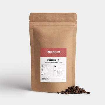 Quantum Ethiopia Bench Maji Forest Coffee