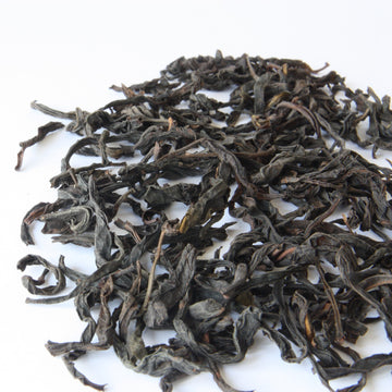 Tea Repertoire 300 Year Old Gushu Dancong (Old Tree) Loose Leaf Oolong Tea