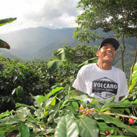 Volcano Coffee Works The Mount Blend Coffee
