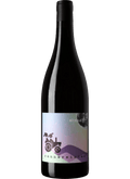 Rennersistas Intergalactic 2019 White Field Blend Wine