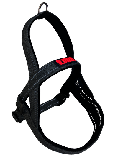 KONG Norwegian harness XL Black