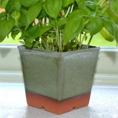 Windowsill Herb Pot - Apple Green
