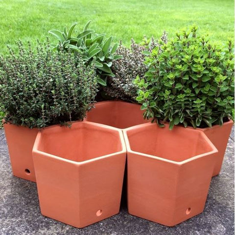 Terracotta Herb Pots / Herb Wheel (set of 7 pots)
