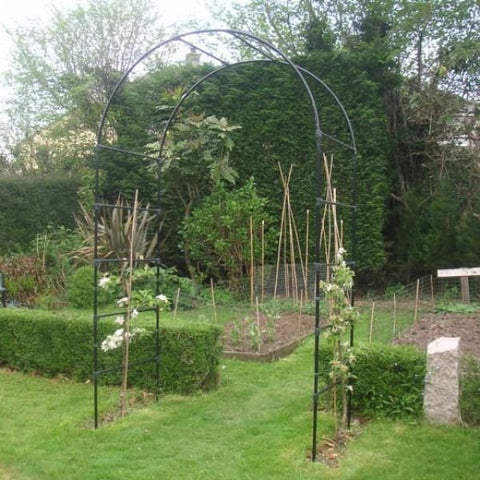 Fruit Tree Arch - Garden Arches