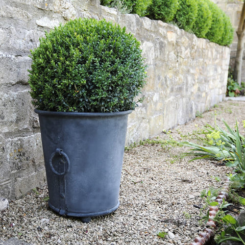 Classic Zinc Planter - 3 sizes
