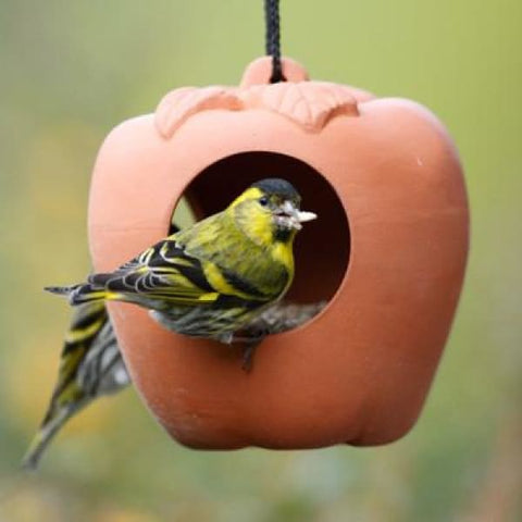 Terracotta Hanging Apple Bird Feeder - Bird Feeders
