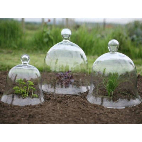 Victorian Glass Bell Jar Cloches - set of 3 - Cloches
