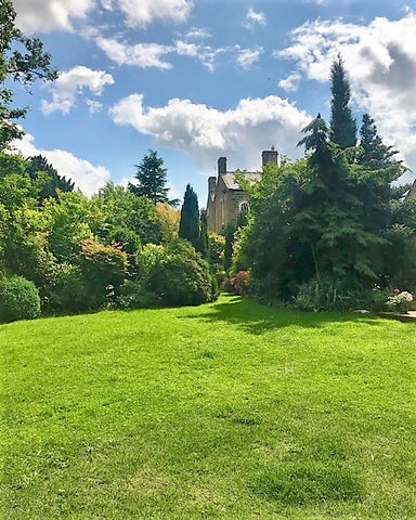 large lawn and established garden at Brookfield House Yorkshire