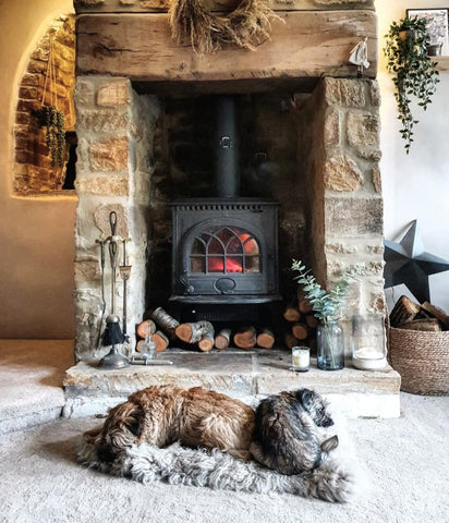 dogs in front of stone fireplace