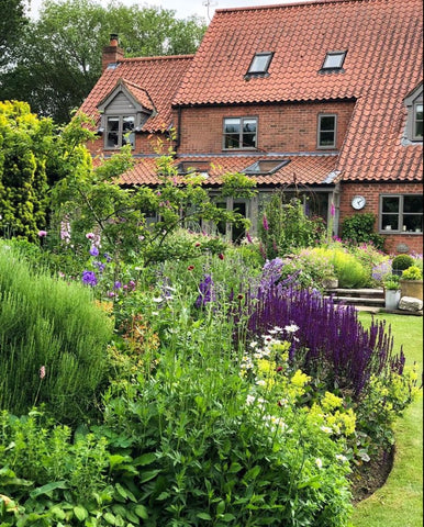 typical English country garden image