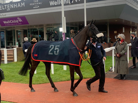 A proud moment watching Strong Glance win at the Cheltenham Festival