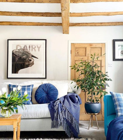 quirky and traditional home interior inspiration