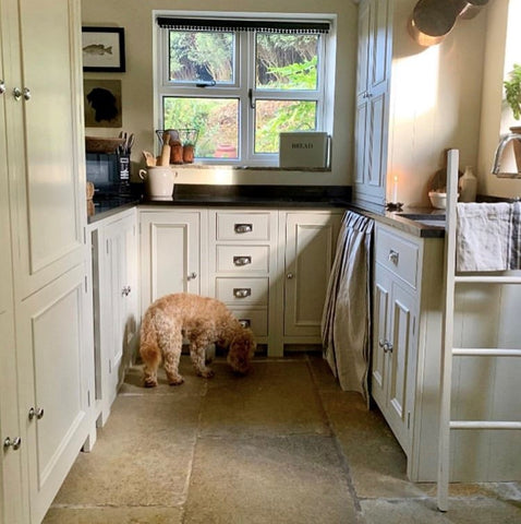 Martha looking for food in this cottage style kitchen