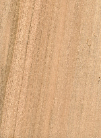 Maple Wood Grain Image